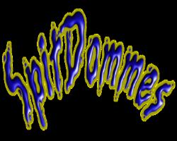Sidebar Logo Spit Dommes
